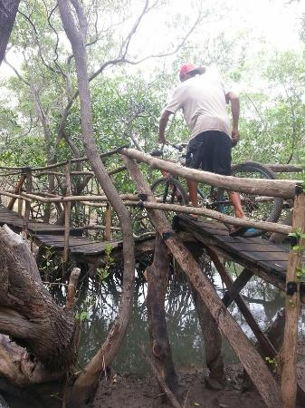 Equilibrio Yoga Art Surf Resort: cool bridge James designed, you will see on the hike to the beach