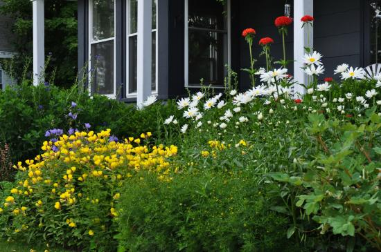 Penury Hall Bed & Breakfast: Perennial Gardens