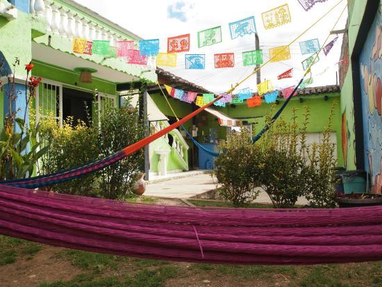 Iguana Hostel : Patio