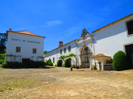 Bombarral, Portugal: Entrada da Quinta do Sanguinhal