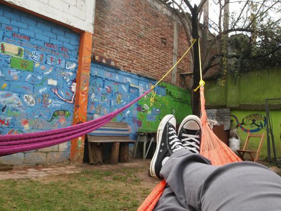 Iguana Hostel : Hamacas