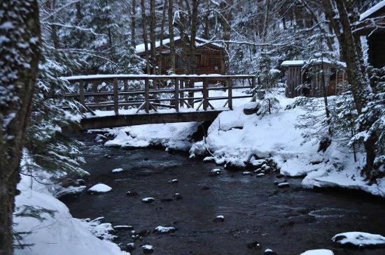 Rustic Log Cabins: View of the bridge over Salmon Brook
