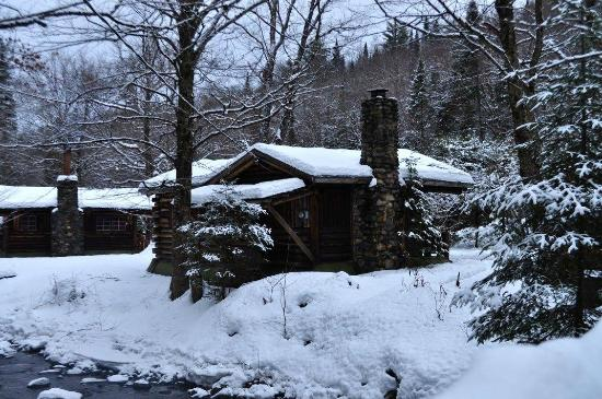 Rustic Log Cabins: Cabin 5