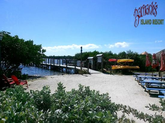 Barnacle Restaurant: Docking is just steps away