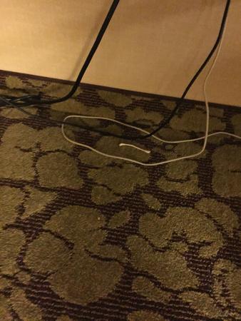 Hilton Garden Inn Los Angeles Montebello: Used Q - Tip on the floor