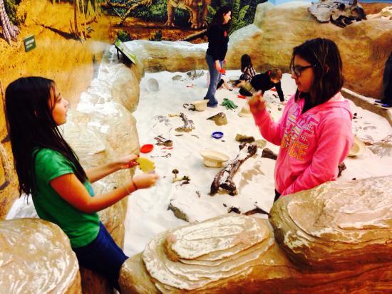 Creative Discovery Museum: Sandbox