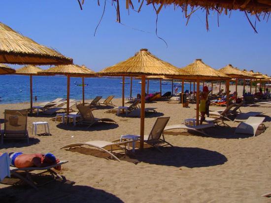 Jenny Hotel : The beach