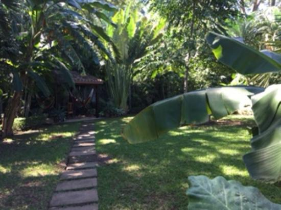 Villa Andalucia Bed and Breakfast: hammocks