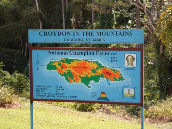 Croydon Plantation: orientation talk