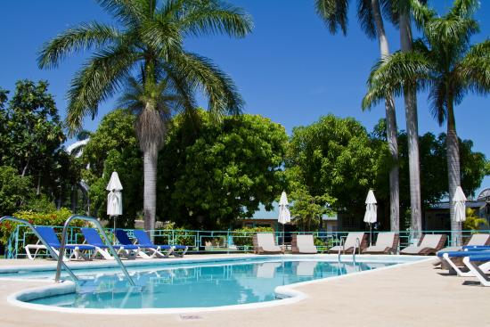 Toby's Resort: Baha Pool