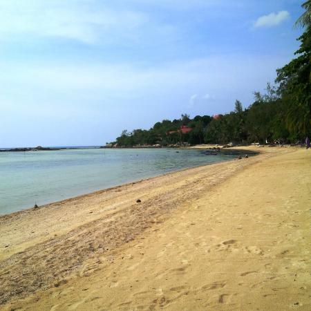 Phangan Cove Beach Resort and Restaurant: Nice beach walk