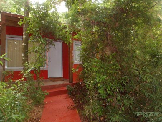 Cabanas Luces de la Selva: cabaña 9