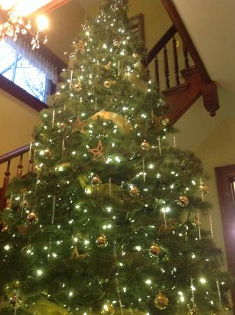 White Swan Inn Bed & Breakfast: 13' Christmas tree welcomes guests to White Swan Inn.