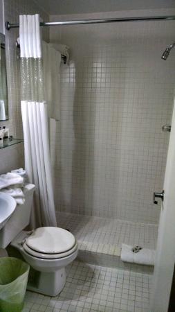 Royal South Beach Hotel: bathroom