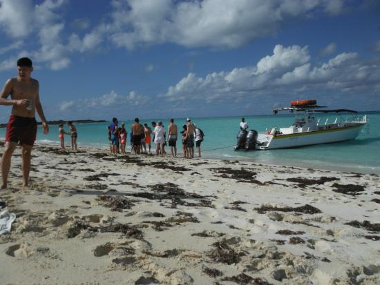 Caribbean Cruisin Charters, Tours & Excursions: picnic area