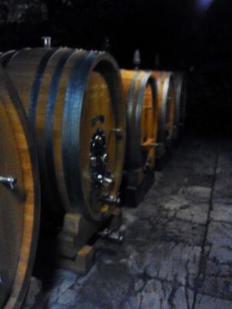 Castello del Trebbio : il Chianti riposa in cantina...