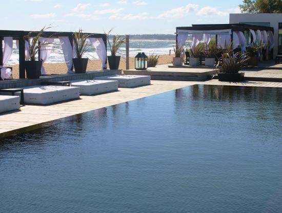 Serena Hotel Punta del Este : Swiming pool with a view
