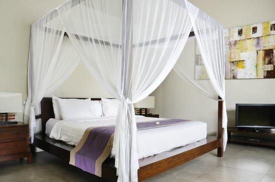 Villa Alice: Room