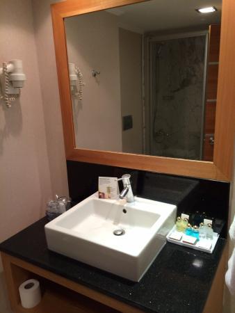 Ankara Plaza Hotel : Bathroom /mahsa sabonchi
