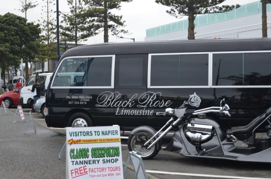 Black Rose Limousine: The Bus