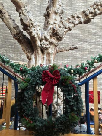 Medici: The Tree and a Wreath