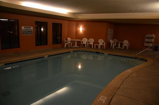 Comfort Suites Gothenburg : Indoor heated pool