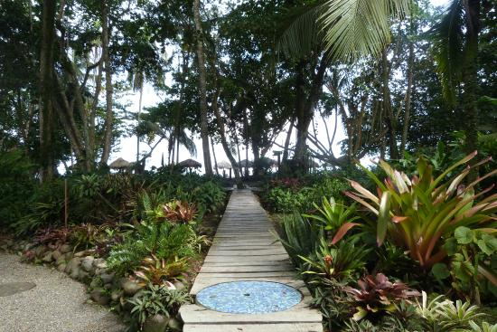 Hotel Banana Azul: pasillo a la playa