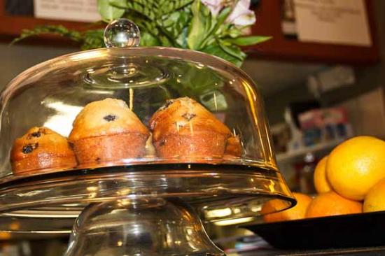 Kalamazoo County, MI: Fresh Muffins