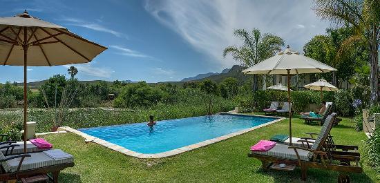 Rosendal Winery & Wellness Retreat: The swimmingpool at Rosendal