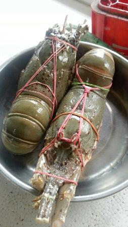 Made Bagus Cafe: Fresh Lobsters at IDR500k/kg as at 10/12/2014.