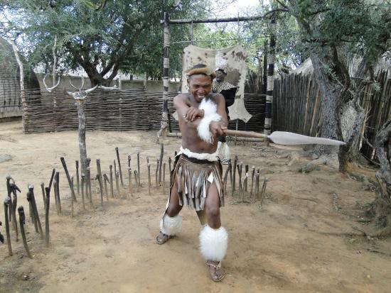 Shakaland: education, information and some show