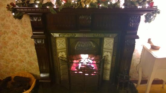 Peat Fireplace ! wonderful... - Picture of School View B&B ...