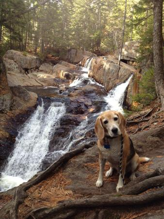 Rangeley, ME: Smalls Falls