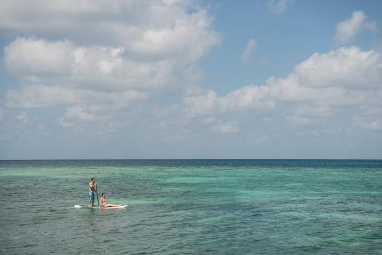 Hatchet Caye Resort: Paddle Boarding at Hatchet Caye Private Island Resort Belize