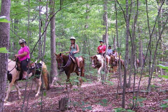 Happy Trails Farm - Private Trail Rides