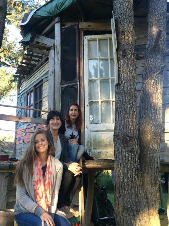 Bouland Uruguay: la maison dans l'arbre