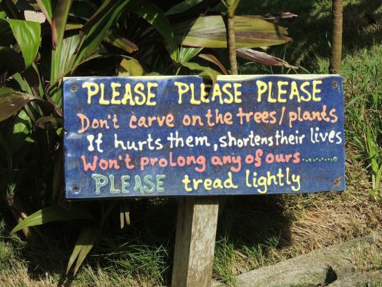 Flower Forest: Polite notice!