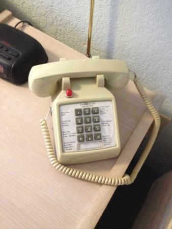 Evergreen Inn: whack a phone