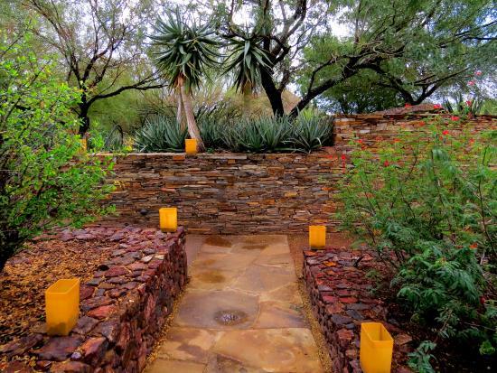 Relaxing In The Shade Garden Picture Of Desert Botanical Garden Phoenix Tripadvisor