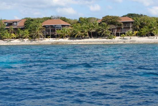 Deep Blue Resort Utila: Deep Blue