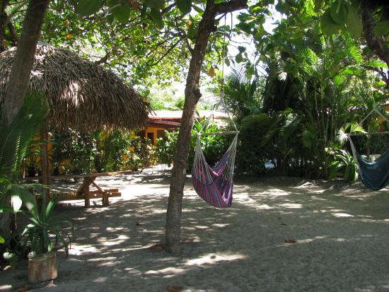 Fenix Hotel - On The Beach: View from beach to hotel