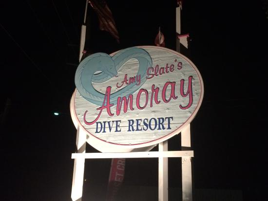 Amoray Dive Resort: Great place!