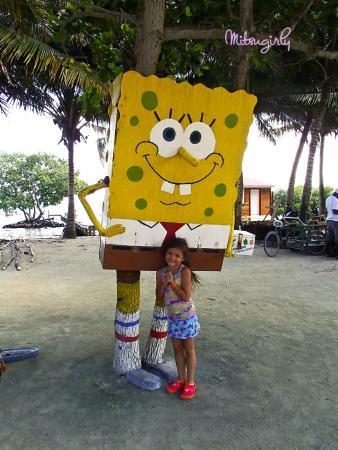 Sobre Las Olas: Sponge Bob palm