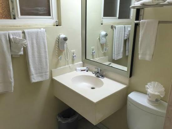 Americas Best Value Inn & Suites: Clean bathroom