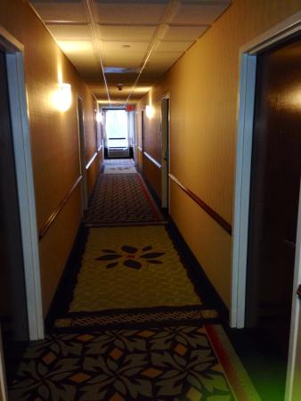 Holiday Inn Express Hotel & Suites South Portland: Room Hallway