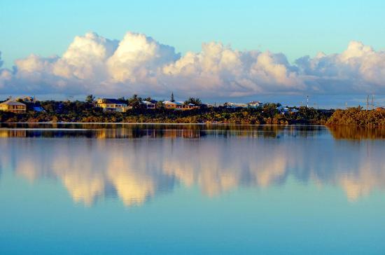 Harbour Club Villas & Marina : Flamingo Lake right by our villas