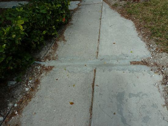 Viva Wyndham Fortuna Beach: Who patches a sidewalk like this??