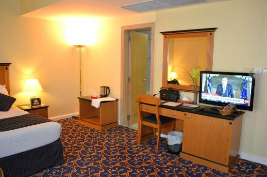 Regal Plaza Hotel Dubai: Room