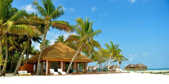 Veligandu Island Resort & Spa : Athiri Bar
