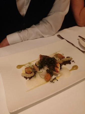 Lumiere: Sea bass